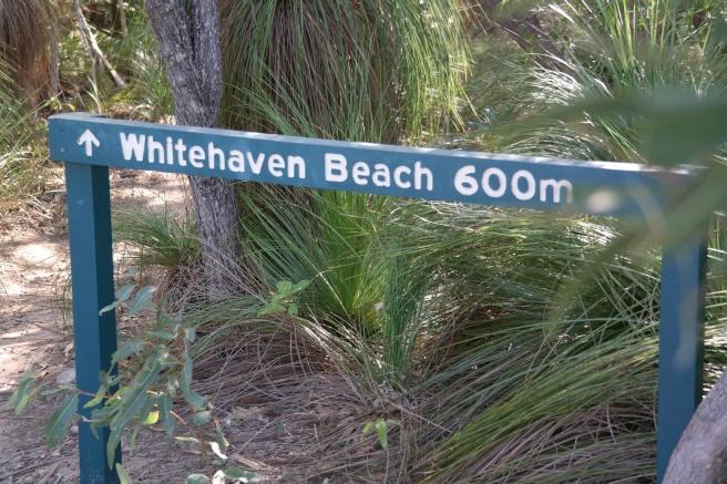 Whitsundays Whitehavenbeach Cruises Bootstour mit Baby Bootfahren Traumstrand weißer Sand Australien Reisen mit Baby