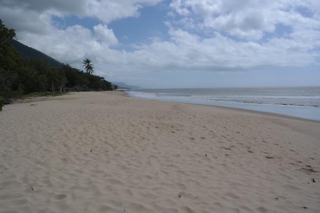 Australien Ostküste Roadtrip Reisen mit Kindern Cairns Port Douglas Küstenstraße Reiseblog